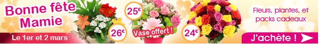 BOUQUET_NANTAIS_Promotion_Fleurs_Fête_Grands_Mères_Wheecard_cashback