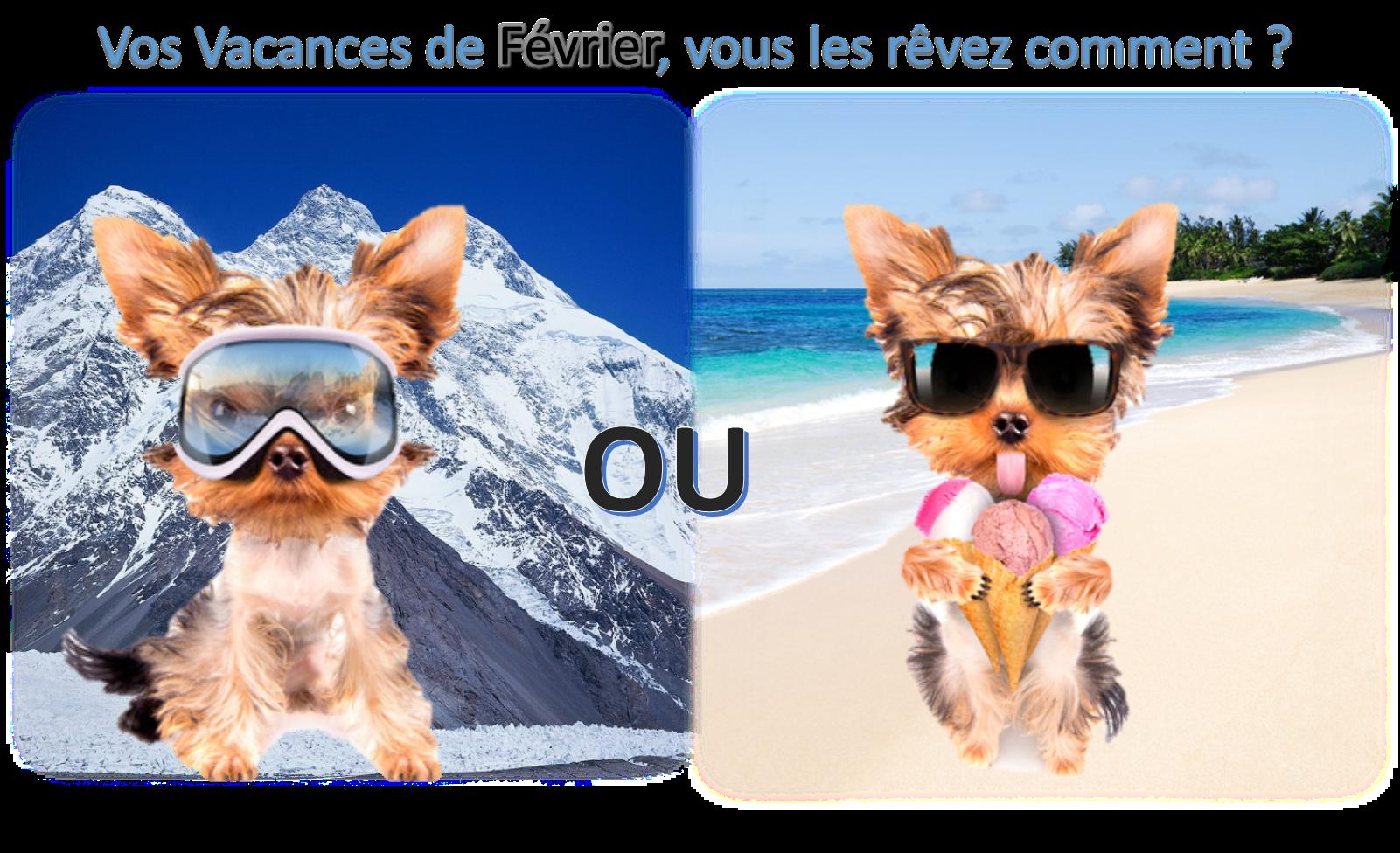 Bons_plans_promotions_vacances_février_2014_Wheecard