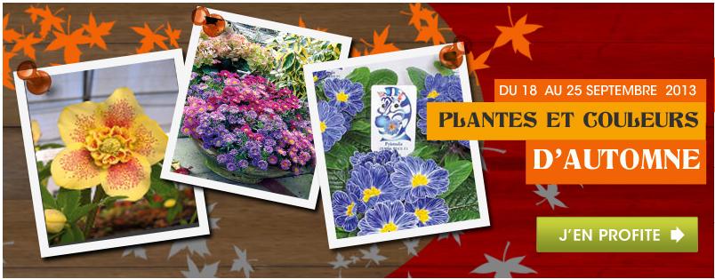 WILLEMSE_promos_jardin_jardinage_plantes_fleurs_arbres_rentrée_2013